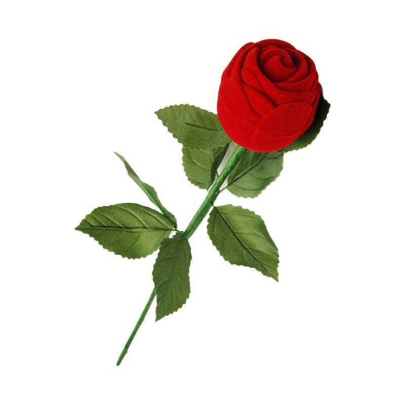 Etui flokowane róża z łodygą